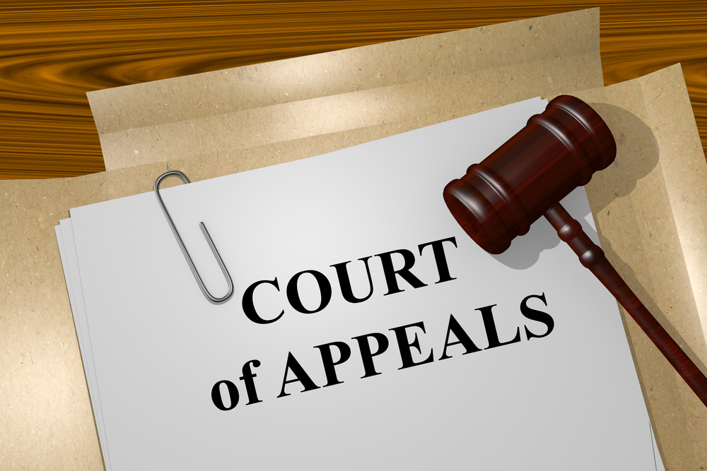 Appeals | Gainesville Appeals Attorney | Gary S. Edinger, P.A.